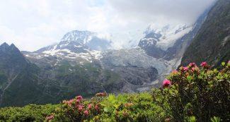 spring at glacier national park montana usa