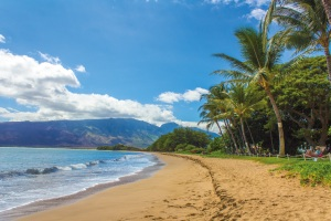 the coastal landscape of maui in hawaii