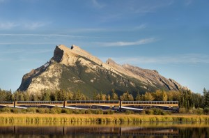 rocky mountaineer train travelling through thr canadian rockies