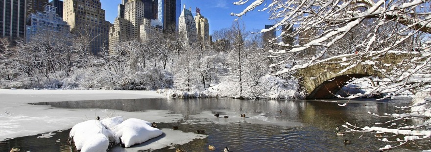 winter in manhattan