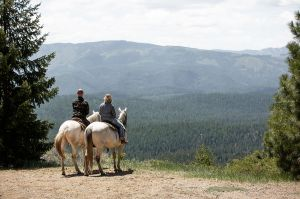 horse back rides across the lost sierra in california