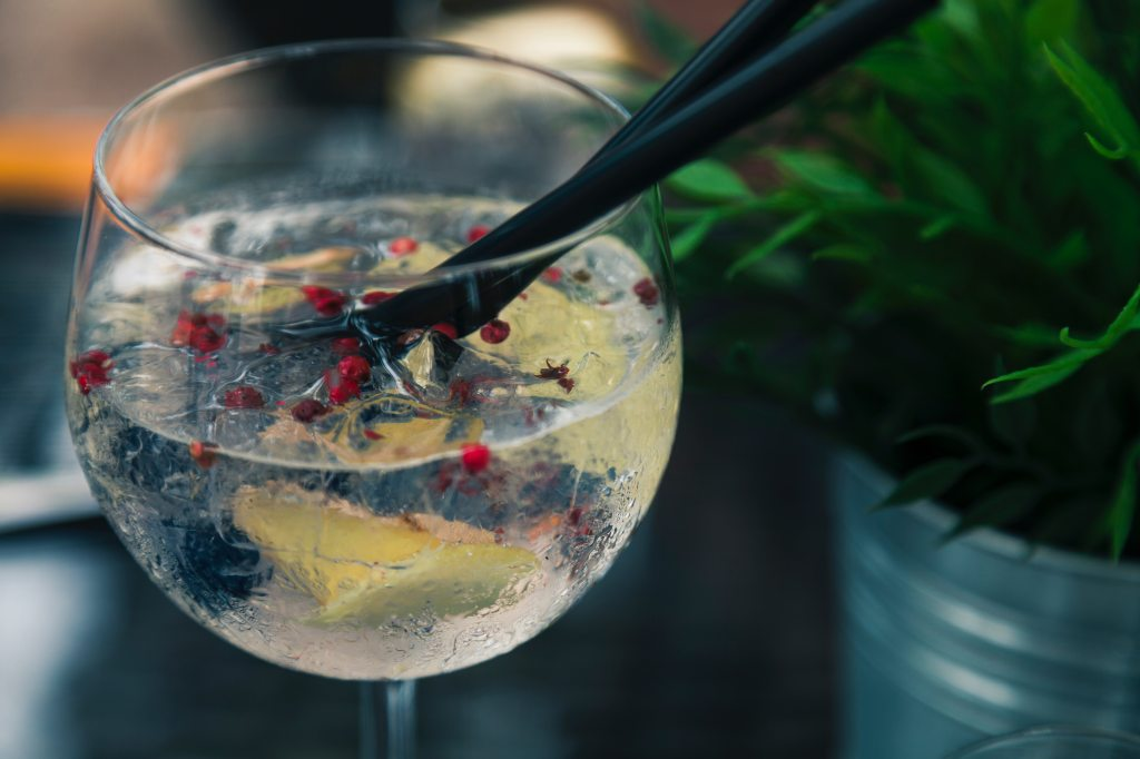 glass of gin with mixer and botanicals