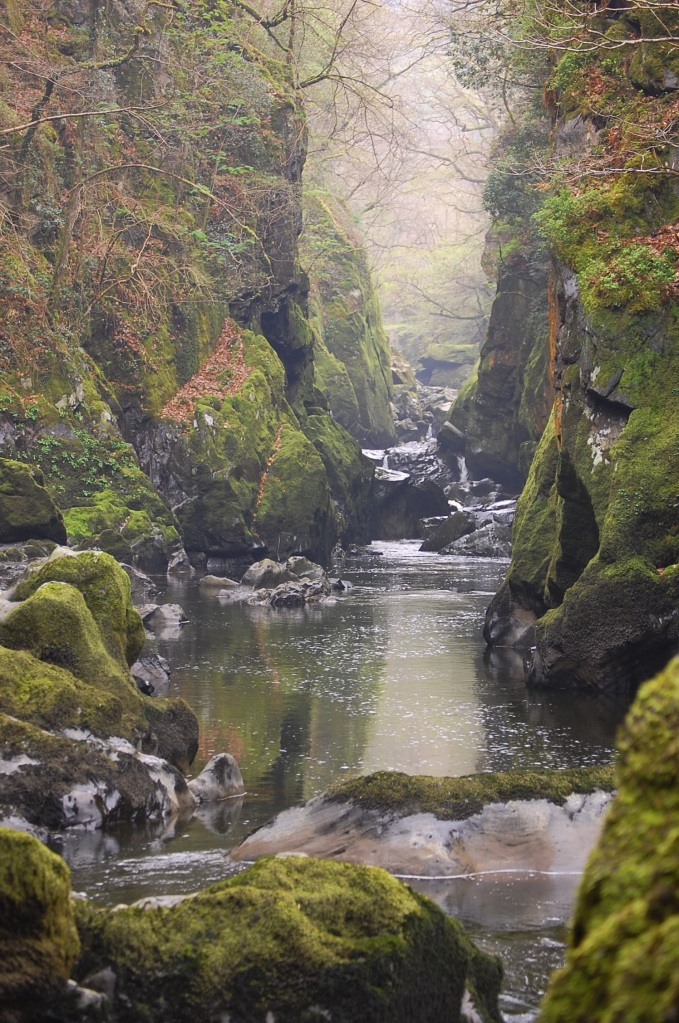 water, trees and rocks of a gorge in wales